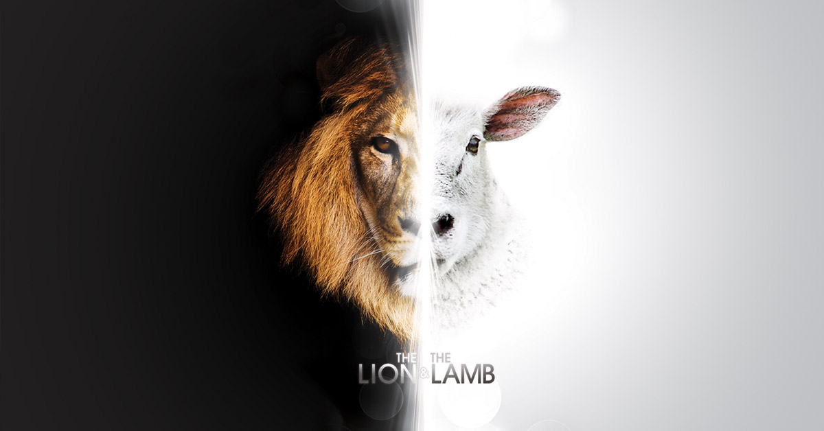 lions for lambs and the things